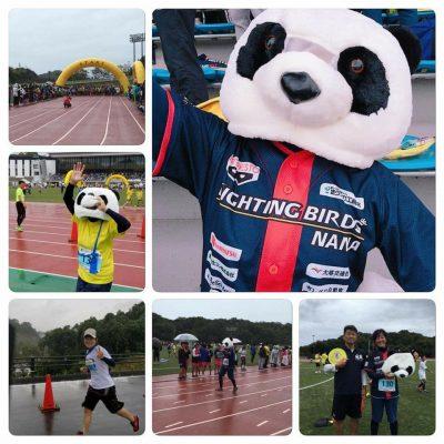 20171021_和歌山リレーマラソン パンダラン02